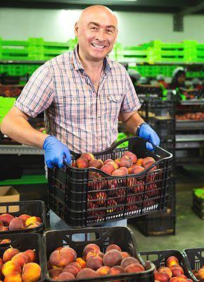 Quels produits font le succès de l'industrie alimentaire?